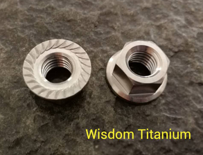 Hex Flange nut VS Hex nuts with serrated flange